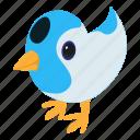 bird, blue, d525, fly, follow, isometric, object