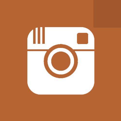 nstagram icon