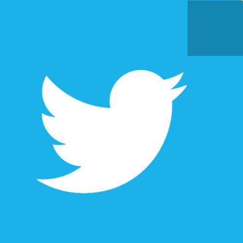 bird, social, tweet, twitter icon