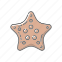 animal, beach, mollusk, seaside, starfish, travel, vacations icon