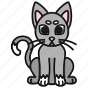 animal, cat, cute, kitten, kitty, pet icon