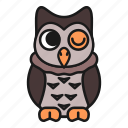 animal, forest, wild, owl, nigth, bird, nature