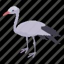 beak, beautiful, beauty, isometric, logo, object, stork