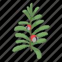 bearberry, berry, bird, cherry, isometric, logo, object