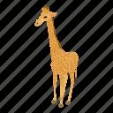 africa, animal, cartoon, giraffe, isometric, logo, object