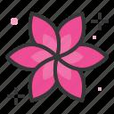 aromatherapy, flora, floral, flower, spa icon