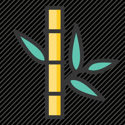 bamboo, gold bamboo, spa icon