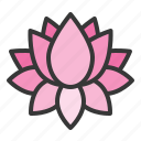 flora, floral, flower, lotus, spa