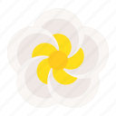 floral, spa, flora, flower, plumeria icon