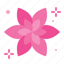 floral, spa, aromaterapy, flora, flower icon