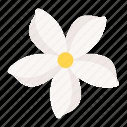 flora, floral, flower, jasmine, spa icon