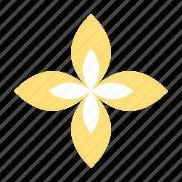 flora, floral, flower, spa icon