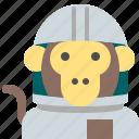 astronaut, interstellar, monkey, space, travel