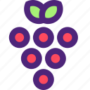 adventure, casino, entertainment, fun, games, grapes, play icon