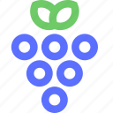 casino, entertainment, fun, games, grapes, play, recreation icon