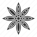 anise, aniseed, condiment, flower, seasoning, spice, star icon