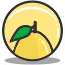 citrus, food, lemon, nutrition icon