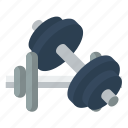 fitness, gym, heavy, dumbbell, muscle