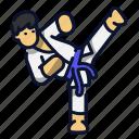 karate, kick, martial art, sport, tae kwon icon