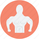 bodybuilder, fitness, gym, weightlifter, weightlifting