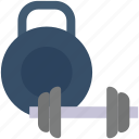 activity, dumbbell, game, gym, sport, weight, weights