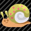 animal, animals, kingdom, life, snail, wild, zoo icon