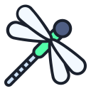 dragonfly, insect, bug icon