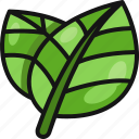 leaf, leaves, green, plant, eco, nature
