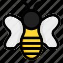 bee, bug, honey, insight icon