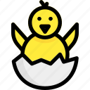 animal, chicken, easter, egg icon