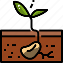 garden, gardening, nature, plant, seed, sprout, tree icon