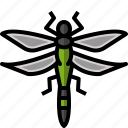 bug, dragonfly, giantdragonfly, infestation, insect, plague icon