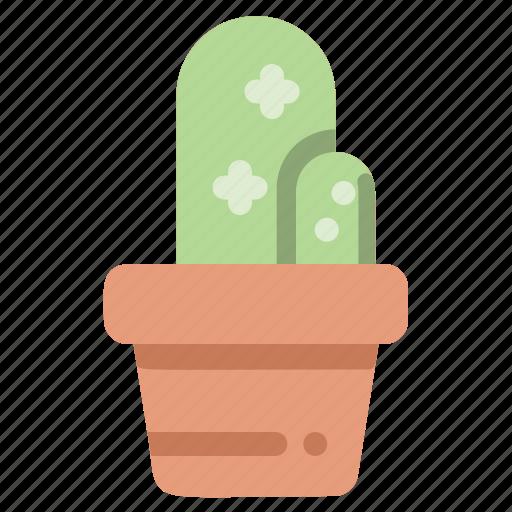 cactus, gardening, houseplant, plant, pot icon