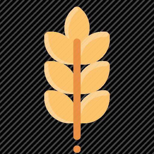 bread, cereal, crop, grain, wheat icon