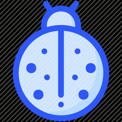 animal, bug, insect, ladybug icon