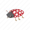 cartoon, cute, insect, ladybird, ladybug, sign, summer icon