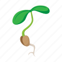 bean, cartoon, leaf, plant, seed, sign, sprout icon