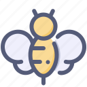 animal, bee, bug, honey, insect