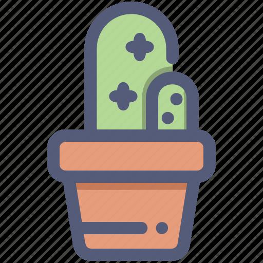 Cactus, gardening, houseplant, plant, pot icon - Download on Iconfinder