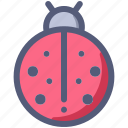 animal, bug, insect, ladybug icon