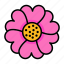 spring, flower, anemone icon
