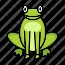 amphibian, animal, creature, frog, toad
