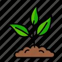 farm, leaf, nature, plant, sprout