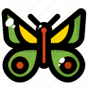 animal, butterfly, insect, nature, spring icon
