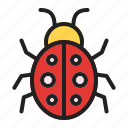 beetle, bug, insect, spring icon