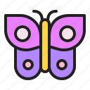 beautiful, butterfly, insect, spring, wing icon