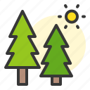 nature, pine, spring, sun icon