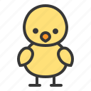 animal, bird, chicken, spring icon