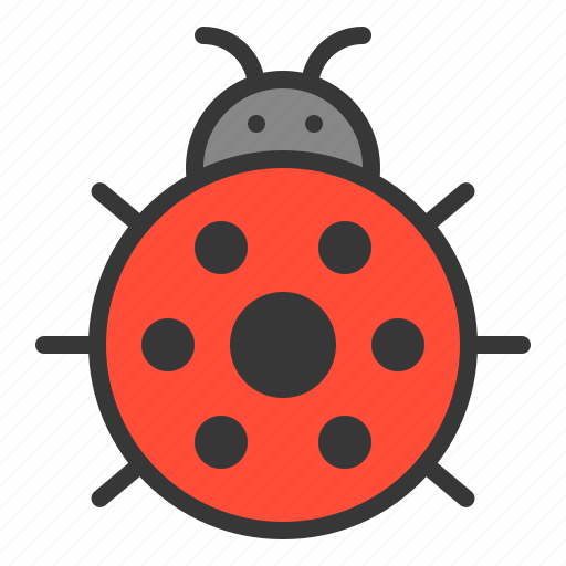 cute, insect, ladybug, nature, spring icon