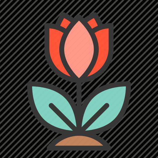 flora, floral, flower, nature, rose, spring icon